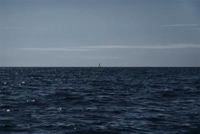 catamaran @ ocean