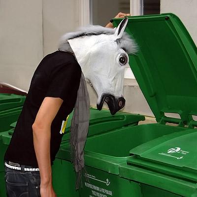 Diego – depressive horse