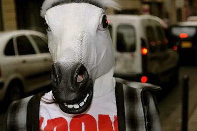 Manuela – she's a horse