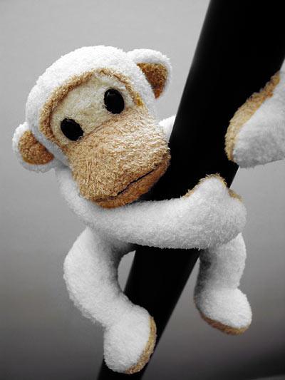fiction : white monkey