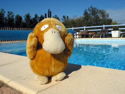 Psykokwak à la piscine